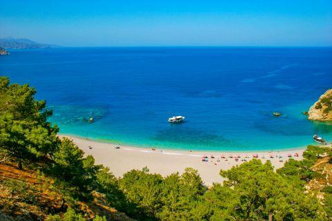 Apella: Apella beach.