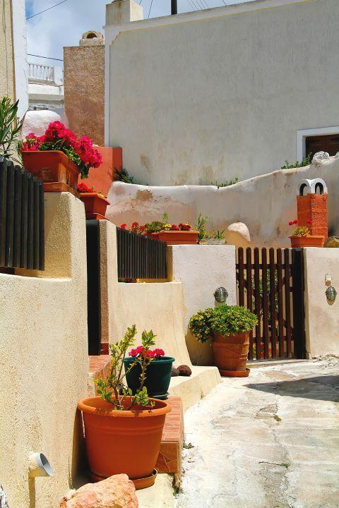 Megalochori: Beautiful flower pots