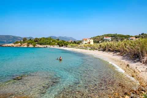 Kedros: Crystal clear waters and vegetation around the beach.