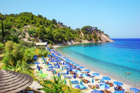 Lemonakia: The amazing, lush vegetation and azure waters of Lemonakia beach