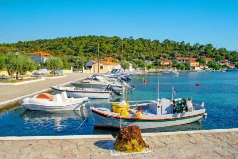Posidonio: Small boats on the harbor of Posidonio.