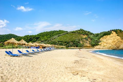 Aselinos: The beach is surrounded by Kounistra Mountain, a site with vast greenery reaching the edge of the shore.