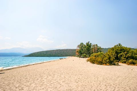Mavrovouni beach: Soft sand and some bushes.