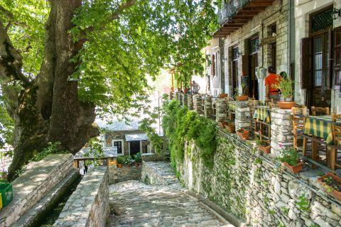 Makrinitsa: Exploring the beauties of Makrinitsa village.