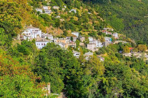 Makrinitsa: Traditional houses, surrounded by lush vegetation
