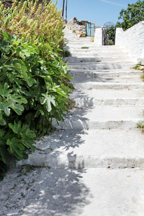 Potamos: Green spots and whitewashed houses
