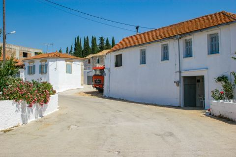 Agios Leon: A quiet street with spacious houses in white color.