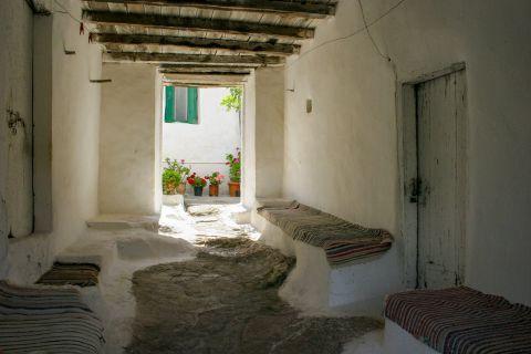 Agios Leon: A cozy, shaded spot.