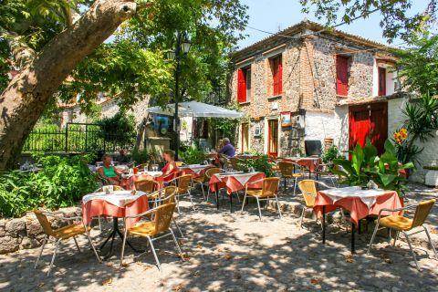 Molivos: A cozy spot to eat and drink in Molivos village.