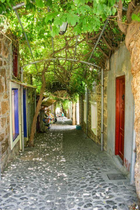 Molivos: A picturesque alley.