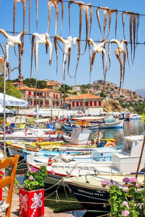 Molivos: A fishing village.