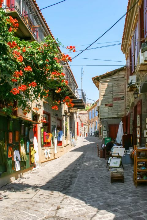 Molivos: A village that has preserved its traditional character.