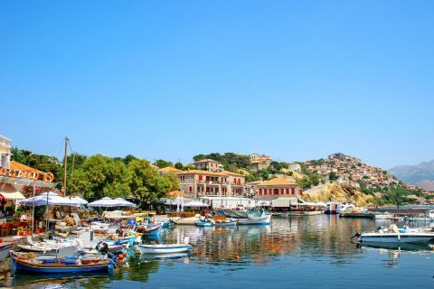 Molivos: Fishing boats, mooring on the calm waters of Molivos