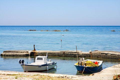 Apidies: Two fishing boats.