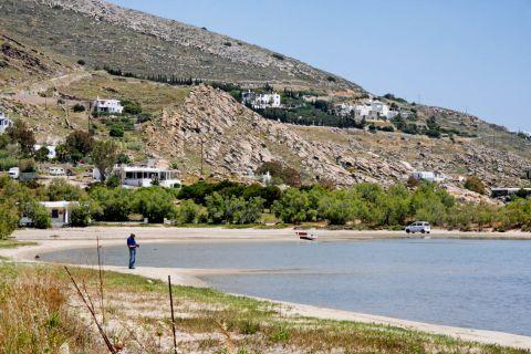 Limnes: Vegetation around Limnes beach