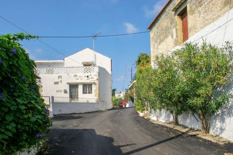 Rodopos: Houses in Rodopos village
