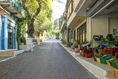 Vamos: Local shops on a quiet street