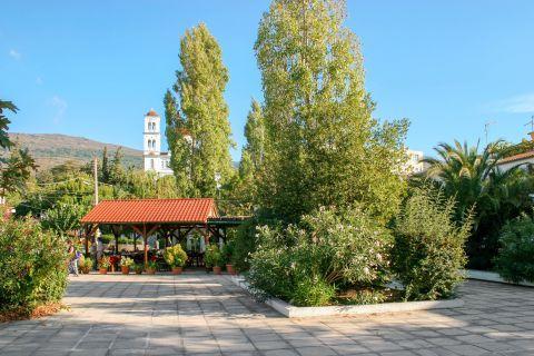 Kandanos: A beautiful spot with trees