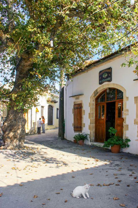 Gavalochori: A local eatery