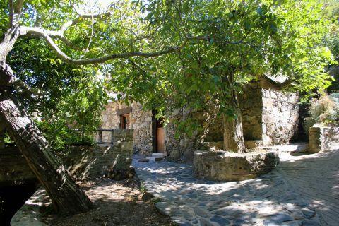 Topolia: At the area of Milia