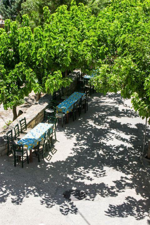 Kalamafka: Traditional taverns under the shade of trees.