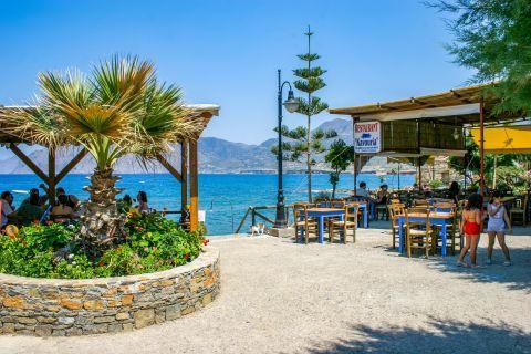 Mochlos: There are many taverns on the beachfront of Mochlos village.