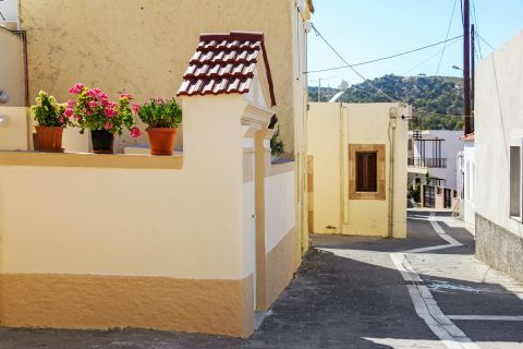 Apolakia: Houses, painted in pale colors with beautiful flower pots.
