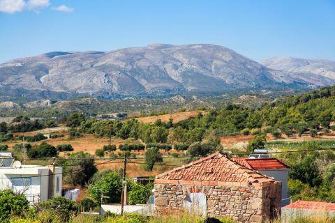 Apolakia: Beautiful landscape of fields and hills.