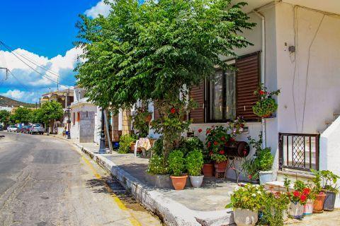 Lardos Village: Beautiful flower pots outside