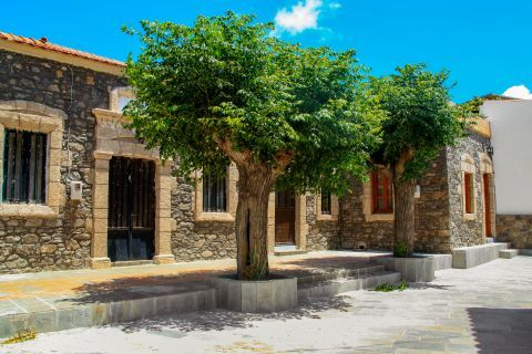 Mesanagros: Stone built construction and beautiful trees.