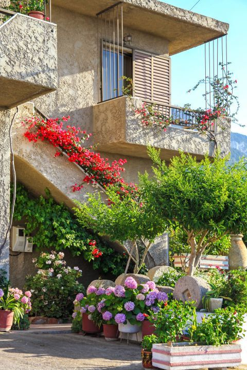 Salakos: Colorful flowers in the yard of an old house.