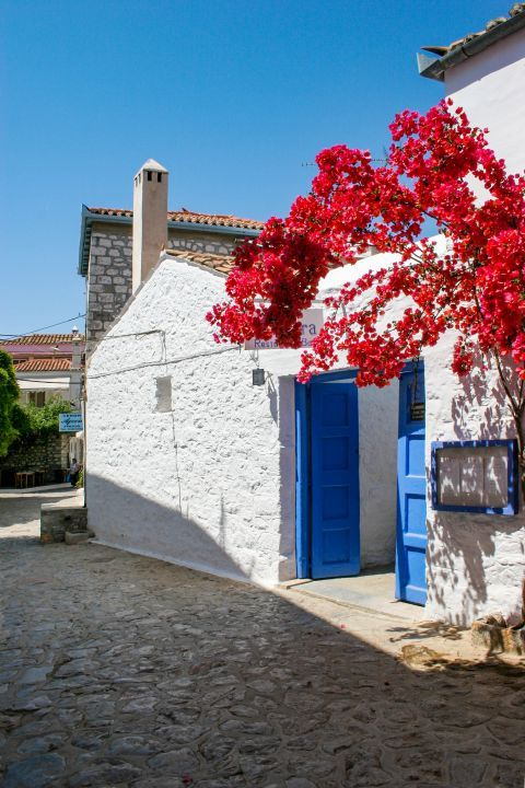 Town: Whitewashed building with blue-colored details and fuchsia flowers. A nice setting, that reminds us of the Cycladic architectural style.