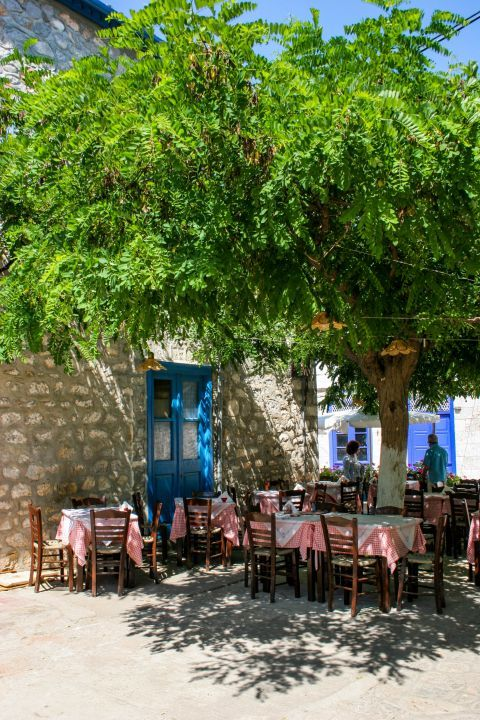 Town: A tavern, housed in a stone-built building with outdoor seating under the shade of big trees.