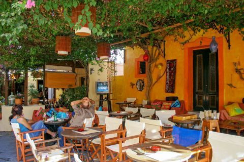 Town: A local cafe with a cozy outdoor seating, shaded by trees and other plants.