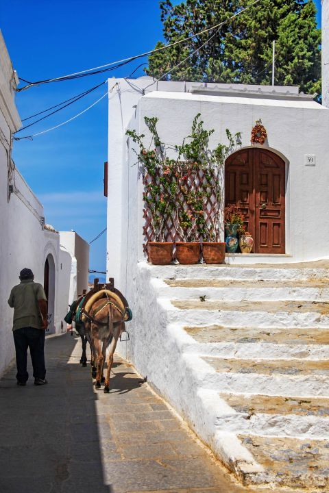 Lindos: A local with his donkey.