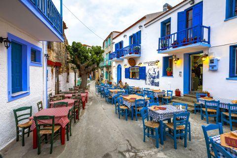 Chora: Taverns in Chora, Alonissos