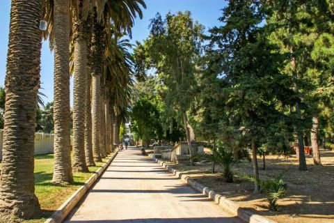 Town: A beautiful park with dense vegetation and tall palm trees.