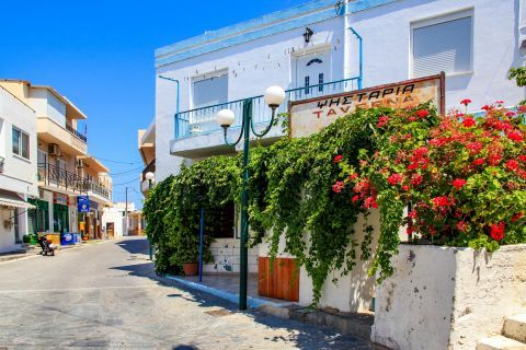 Kefalos: A local tavern with beautiful flowers.