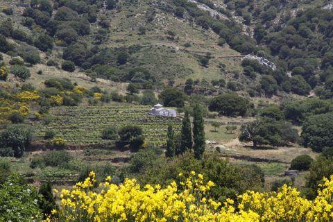 Sifones: Saint Ioannis of Precursor