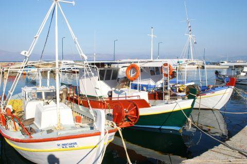 Kissamos: Fishing boats