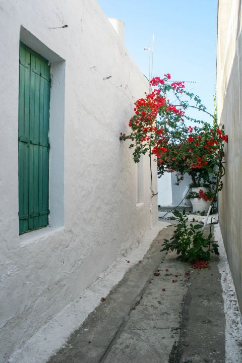 Kissamos: Whitewashed house with colorful windows and flowers