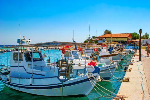 Faliraki: Fishing boats on the harbor of Faliraki.