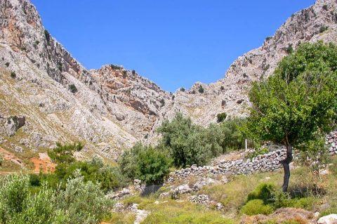 Vrondados: The mountainous surroundings of Vrondados village.
