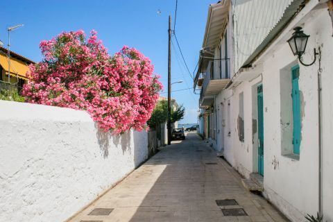 Explore the beautiful alleys of Lefkada.