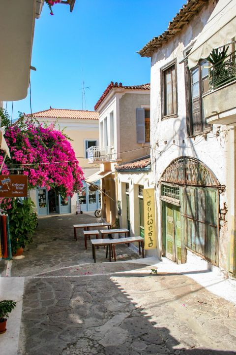 Town: A paved street with colorful flowers.
