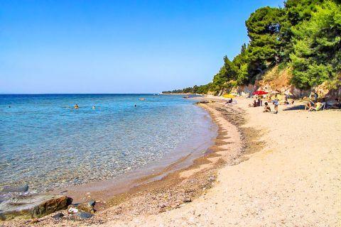Metamorfosi: Metamorfosi beach.