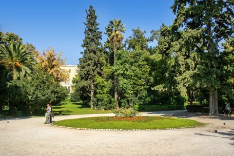 Syntagma: At the National Garden