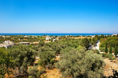 Theologos: Landscape of Theologos village.
