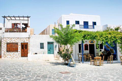 Chora: Taverns in Chora.