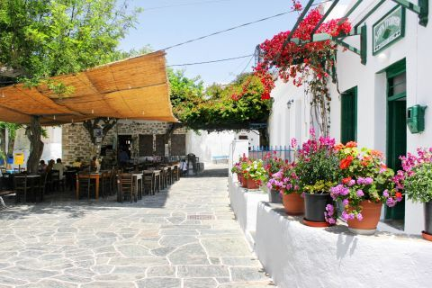Chora: A traditional tavern, decorated with lovely flowers.